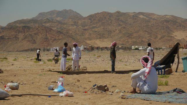 Setting up Dahab Bedouin Festival 2013