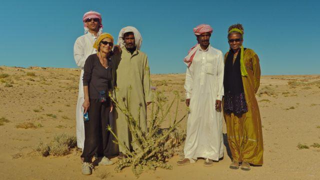 Springtime desert excursion Dahab Bedouin Festival 2014